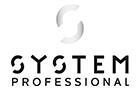 logo-system-professional